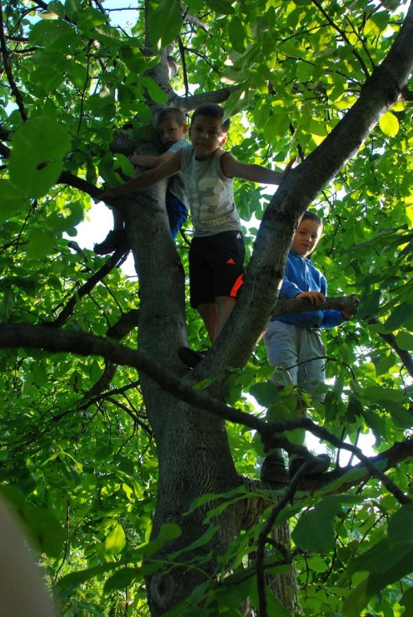 tinkering-school-bratislava-2013-day-5